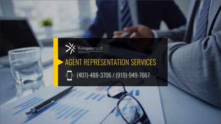 Agent Representation Services in the USA