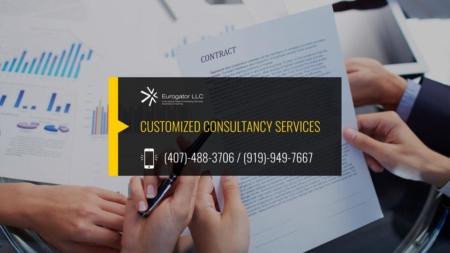 Customized Consultancy Services